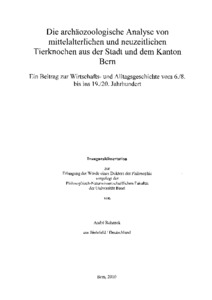 Master thesis on face recognition