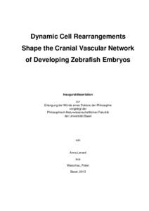 undergraduate research paper about education